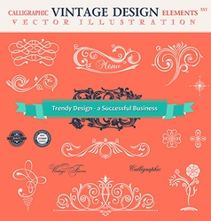 set classic CCalligraphic design elements book vector image