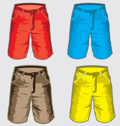 Short pant - Bermuda shorts vector