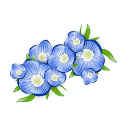 Forget-me-not Flower vector image vector image
