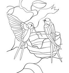 Adult coloring bookpage two swallos in the nest vector