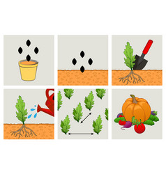 circuit planting seeds technics of agriculture vector image