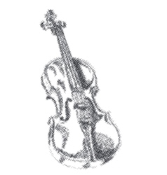 Musical instrument violin on white background vector