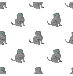 scottish fold icon in cartoon style isolated on vector image
