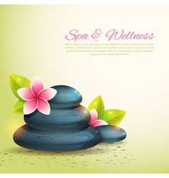 Set of thematical spa cards vector image