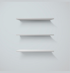 set of white shelfs on a wall vector image