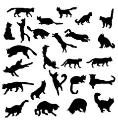 Cats silhouettes set vector image