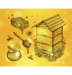 Honey mead beekeeping Hand drawn apiculture vector image vector image