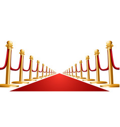 velvet rope and red carpet vector image