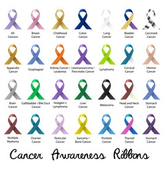 Cancer awareness various color and shiny ribbons vector