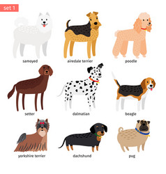 Dog breeds cartoon icon vector