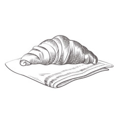 hand drawn croissant lying on cloth isolated vector image