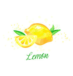 lemon watercolor imitation design with paint vector image