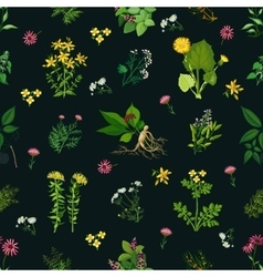 Medicinal Herbs Seamless Pattern vector image