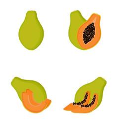 papaya whole fruit half slices vector image