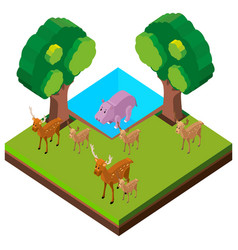 wild deers and hippo in forest vector image