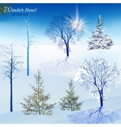 Winter trees set vector image