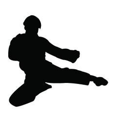 Karate man silhouette vector image vector image