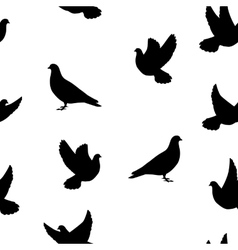 Isolated silhouette of the bird dove vector image