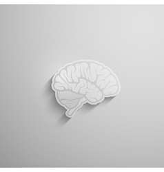 A paper 3d human brain with long shadow vector