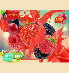 Forest fruit mixed berry 3d realistic package vector