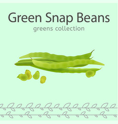 Green snap beans vector