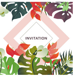 hand drawn tropical plant heliconia palm vector image