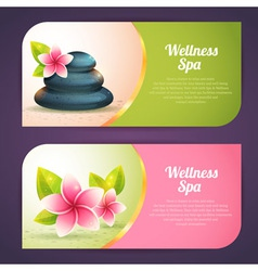 Set thematical spa cards vector