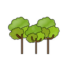 isolated scribble trees vector image