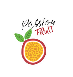 passion fruit abstract vegan food vector image