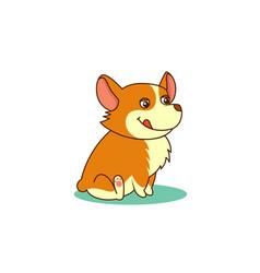 cute dog of welsh corgi of vector image