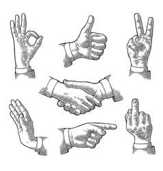 Male hand sign like handshake ok stop middle vector