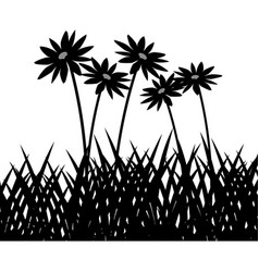 wild herbs and flowers vegetation silhouette vector image vector image