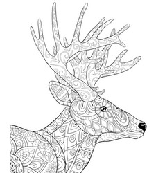 Adult coloring bookpage a cute deer with big vector