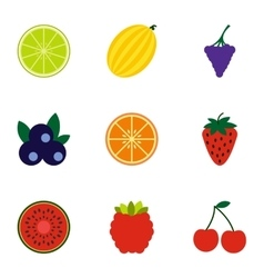 Fresh fruit icons set flat style vector image