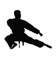 Karate man silhouette vector image