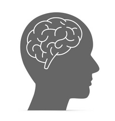 silhouette head with brain vector image
