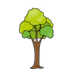 isolated scribble tree vector image