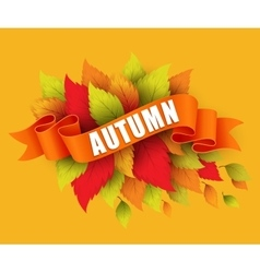 Fall leave with ribbon banner vector image