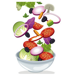 bowl salad vegetables fresh vitamins vector image