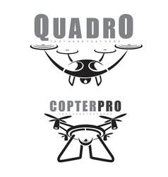 Quadrocopter vector