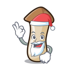 Santa pleurotus erynggi mushroom mascot cartoon vector