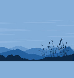 silhouette of desert with grass landscape vector image