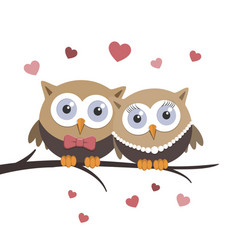 Valentine owls in love on a white background vector