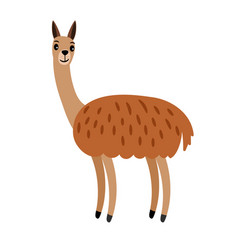 Vicuna cute cartoon animal vector