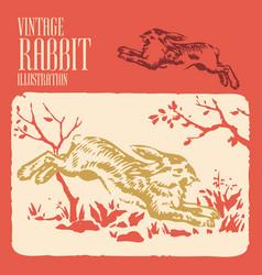 Vintage animal design rabbit vector