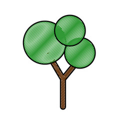 isolated scribble tree vector image vector image