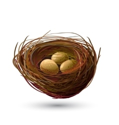 Bird Nest and golden Eggs vector image
