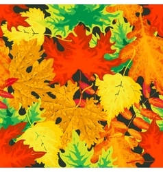Bright and colorful autumn leaves seamless pattern vector image