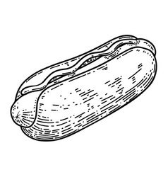 hot dog in engraving style design element for vector image