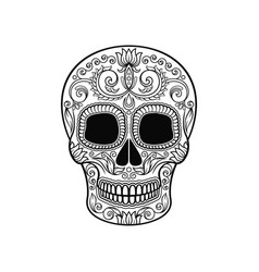 Mexican sugar skull with floral pattern dia de vector